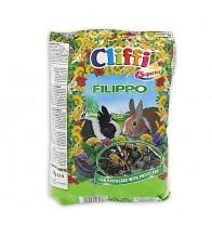 CLIFFI FILIPPO