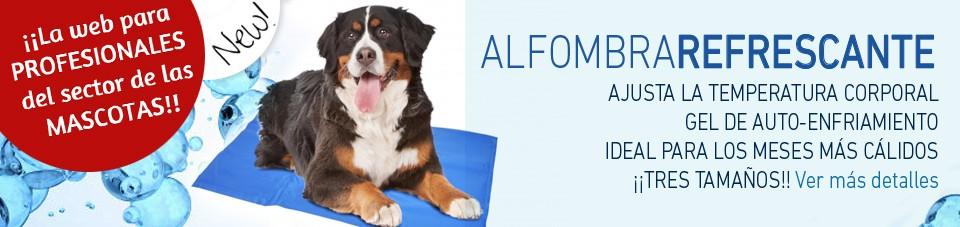Mayorista y Fabricante de Productos y Accesorios para Mascotas