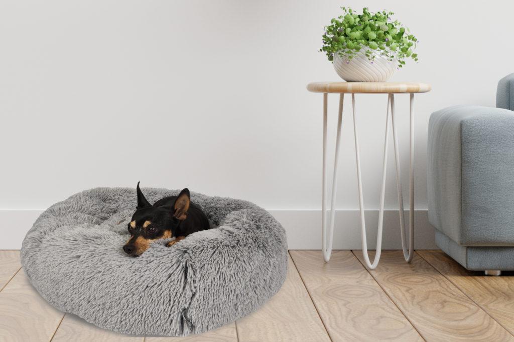 Catálogo descanso cunas perros