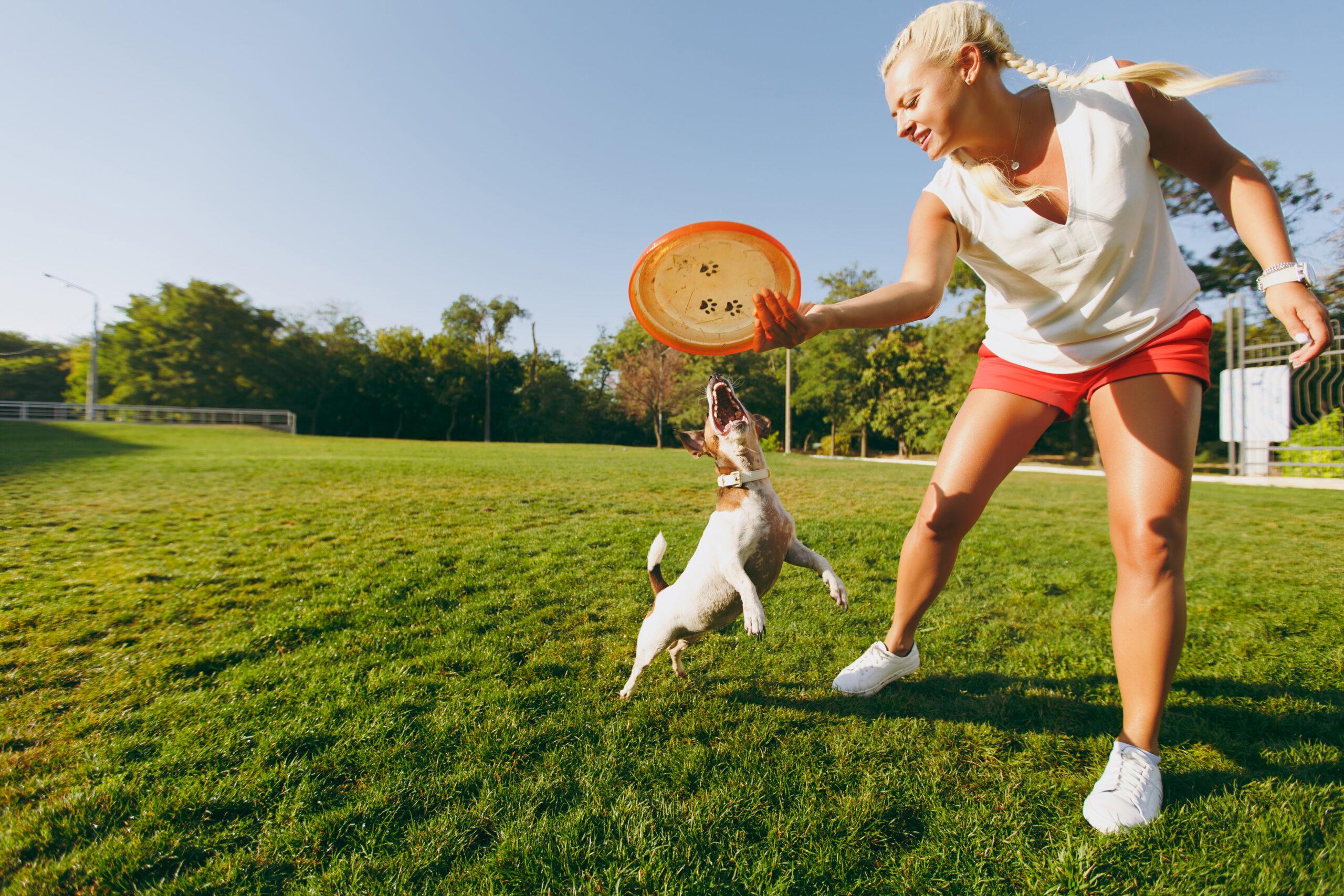 Beneficios de jugar con tu perro